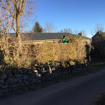 Création et entretien d'espaces verts